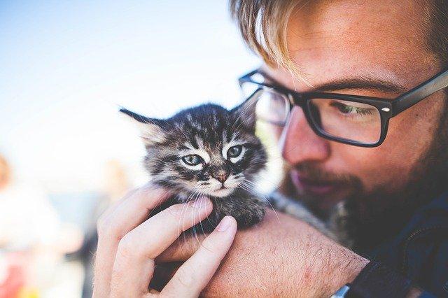 Muž a kočka